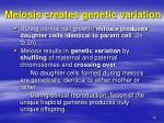 meiosis creates genetic variation