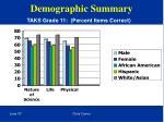 demographic summary30