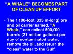 a whale becomes part of clean up effort