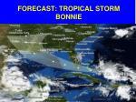 forecast tropical storm bonnie