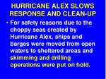hurricane alex slows response and clean up