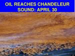 oil reaches chandeleur sound april 30
