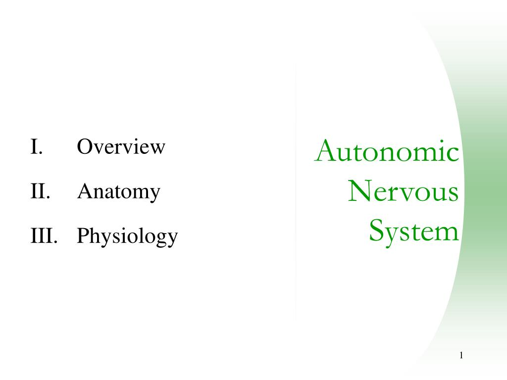 overview anatomy physiology l.