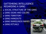 gattehring intelligence regarding a gang