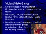 violent hate gangs
