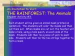 an invitation to visit the rainforest the animals