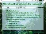 why should we conserve the rainforest