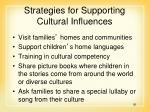 strategies for supporting cultural influences