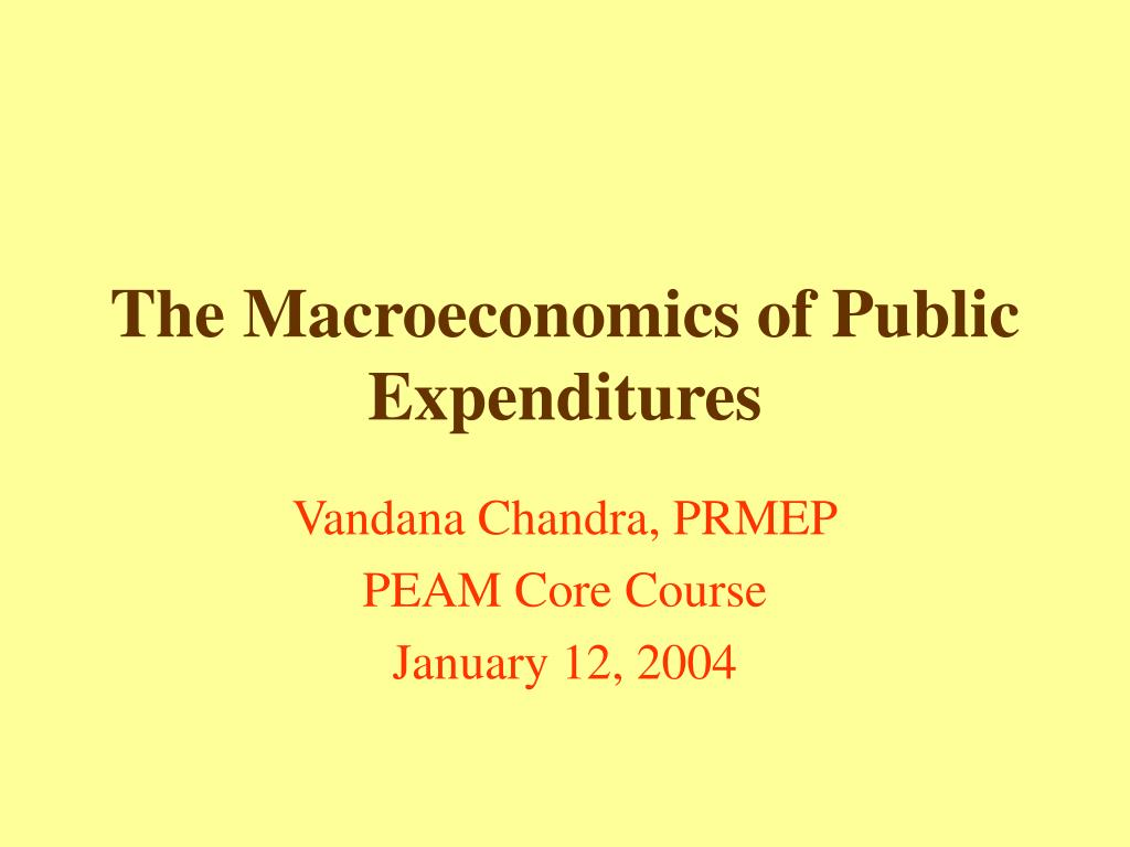 the macroeconomics of public expenditures l.
