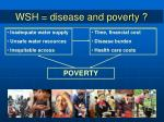 wsh disease and poverty