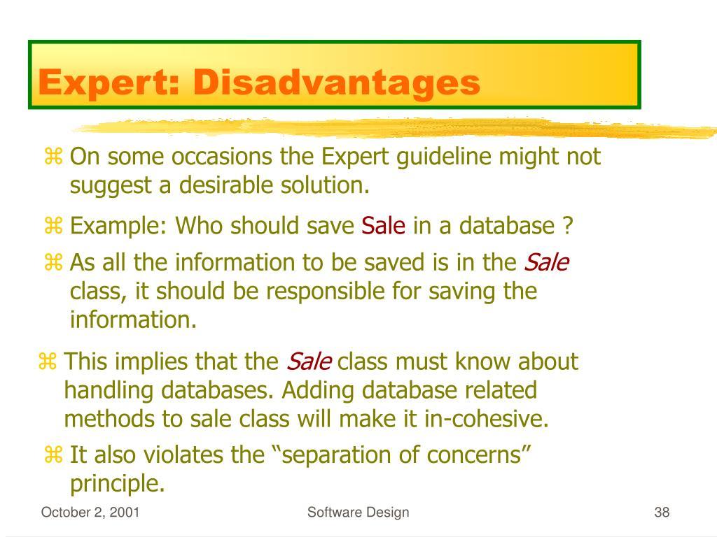 Expert: Disadvantages