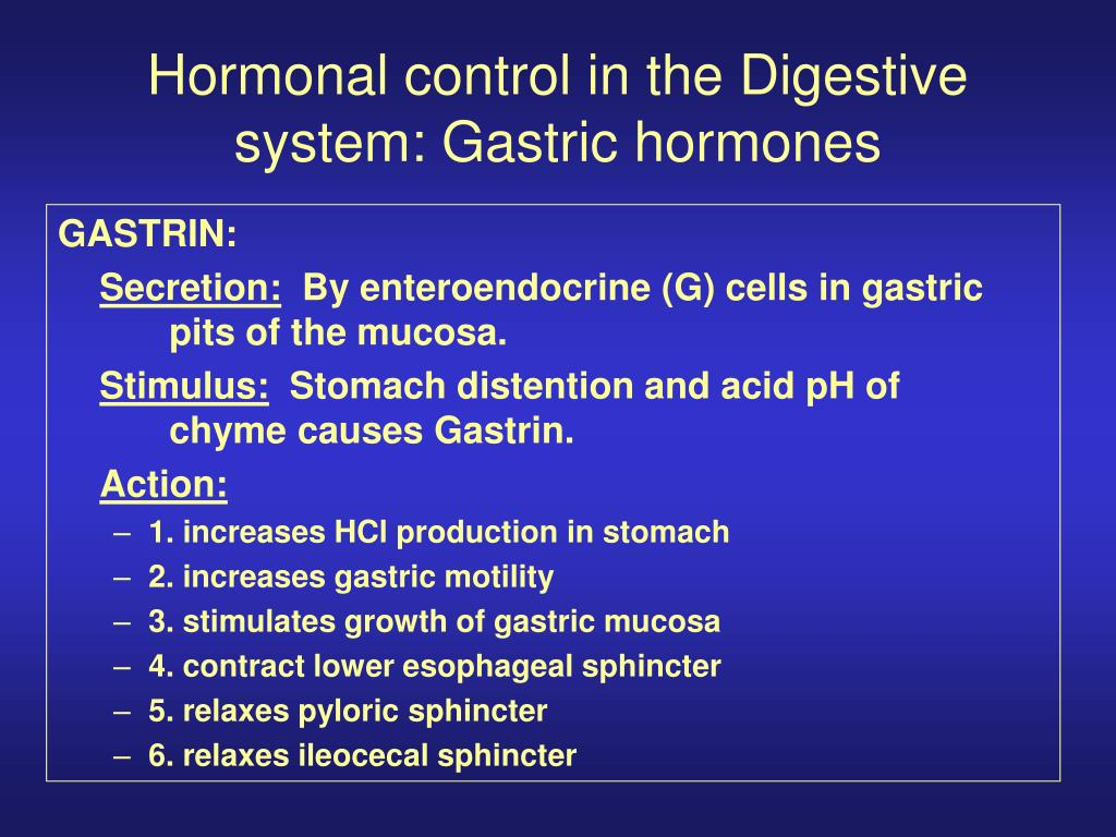 hormonal control in the digestive system gastric hormones l.