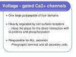 voltage gated ca2 channels