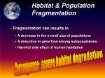 habitat population fragmentation