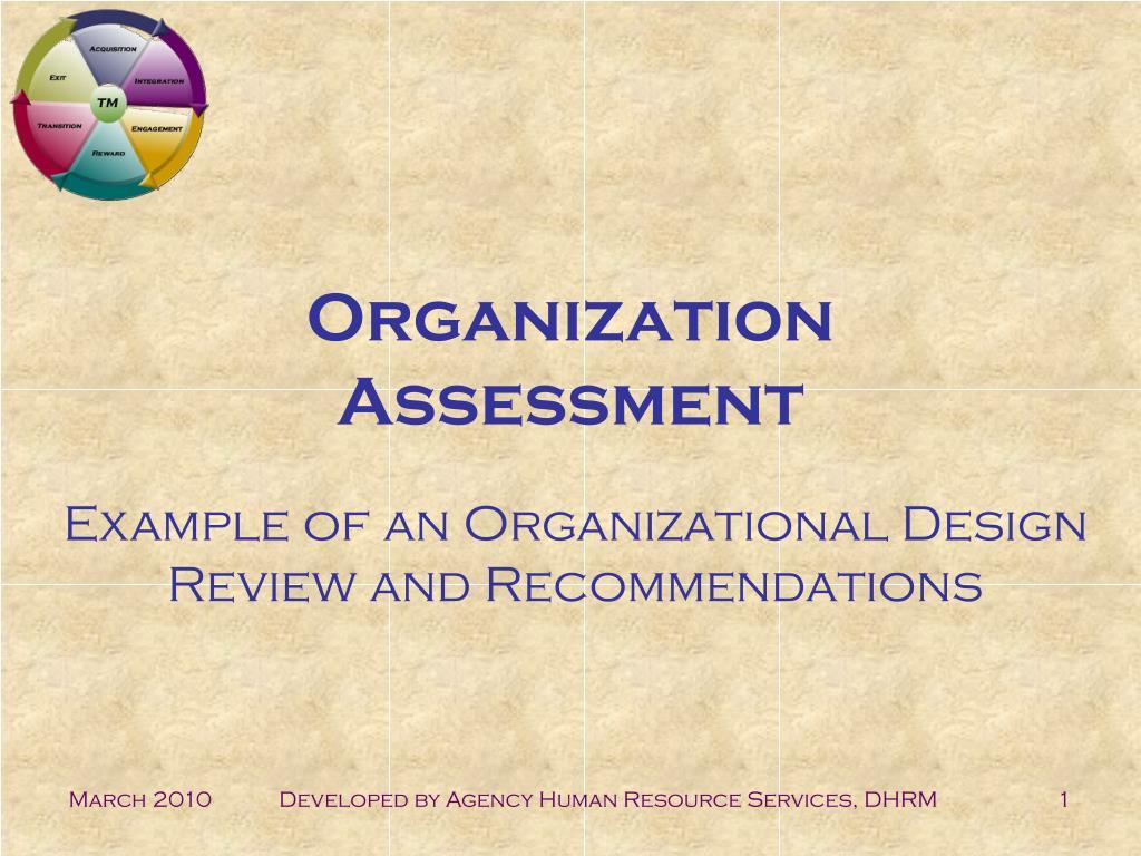 organization assessment l.