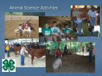 animal science activities