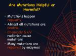 are mutations helpful or harmful