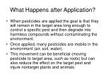 what happens after application