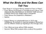 what the birds and the bees can tell you18
