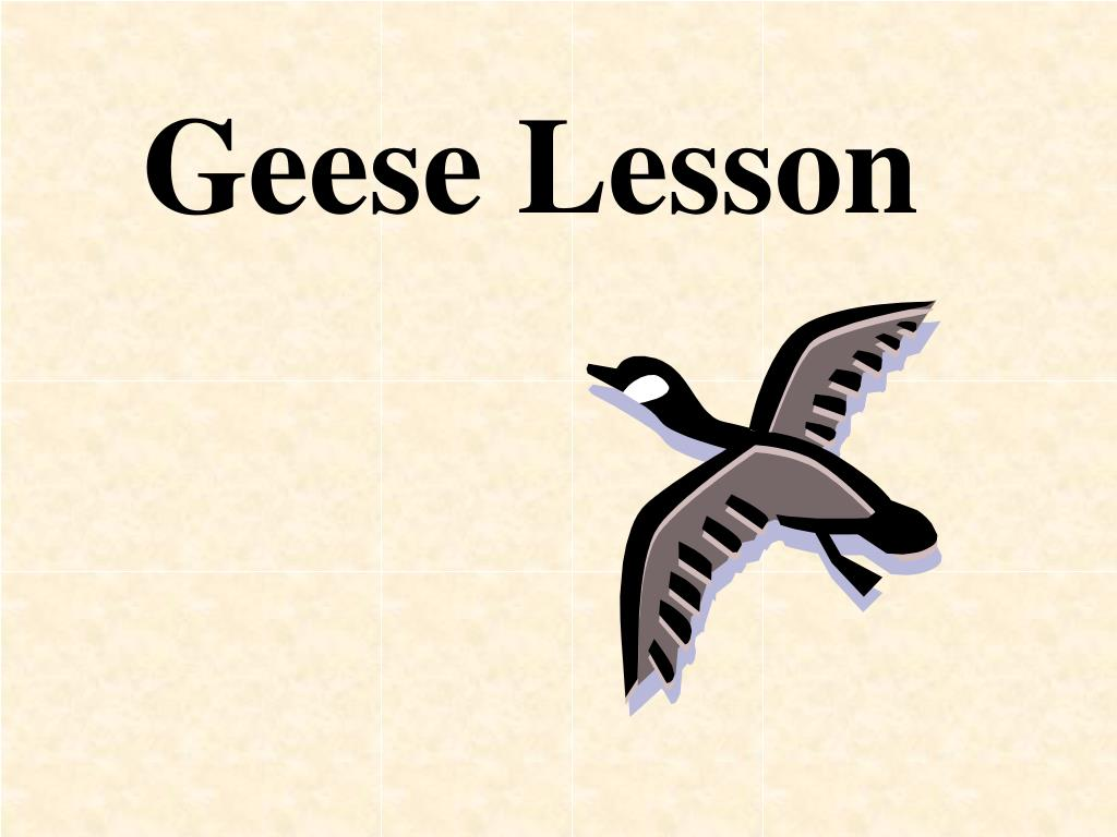 geese lesson l.