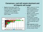 consensus coal will remain dominant and oil imports will surge