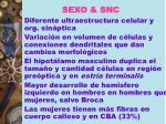 sexo snc