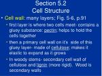 section 5 2 cell structure15