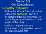 section 5 5 cell specialization53