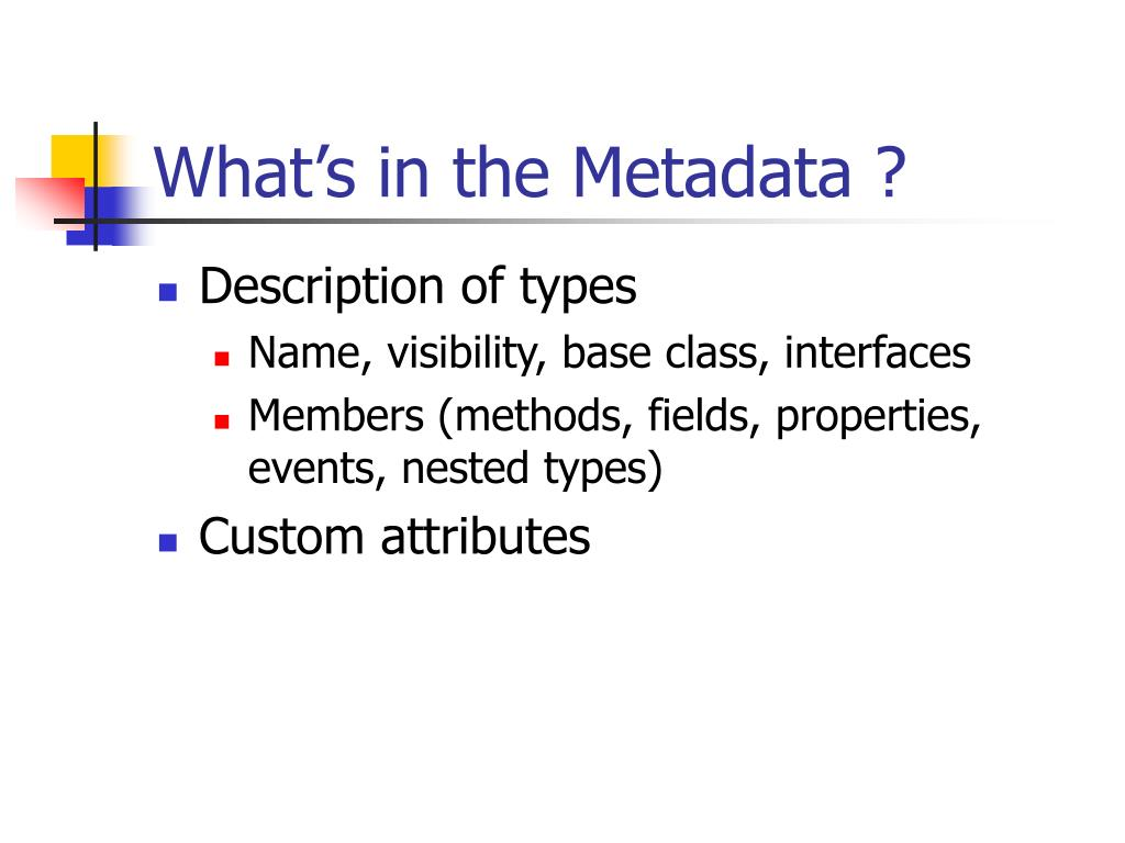 What's in the Metadata ?