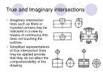 true and imaginary intersections