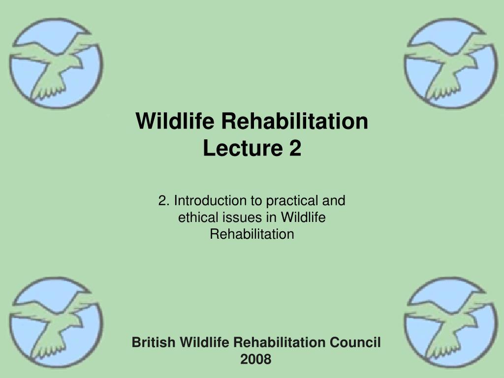 wildlife rehabilitation lecture 2 l.