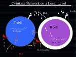cytokine network on a local level