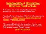 inappropriate destructive behavior shall include