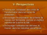v perspectives