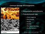 common spoilage microorganisms