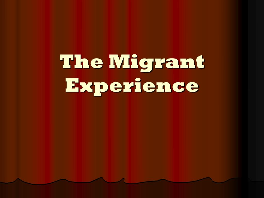 the migrant experience l.