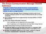 the avaya communication manager branch gateways