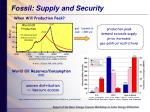 fossil supply and security
