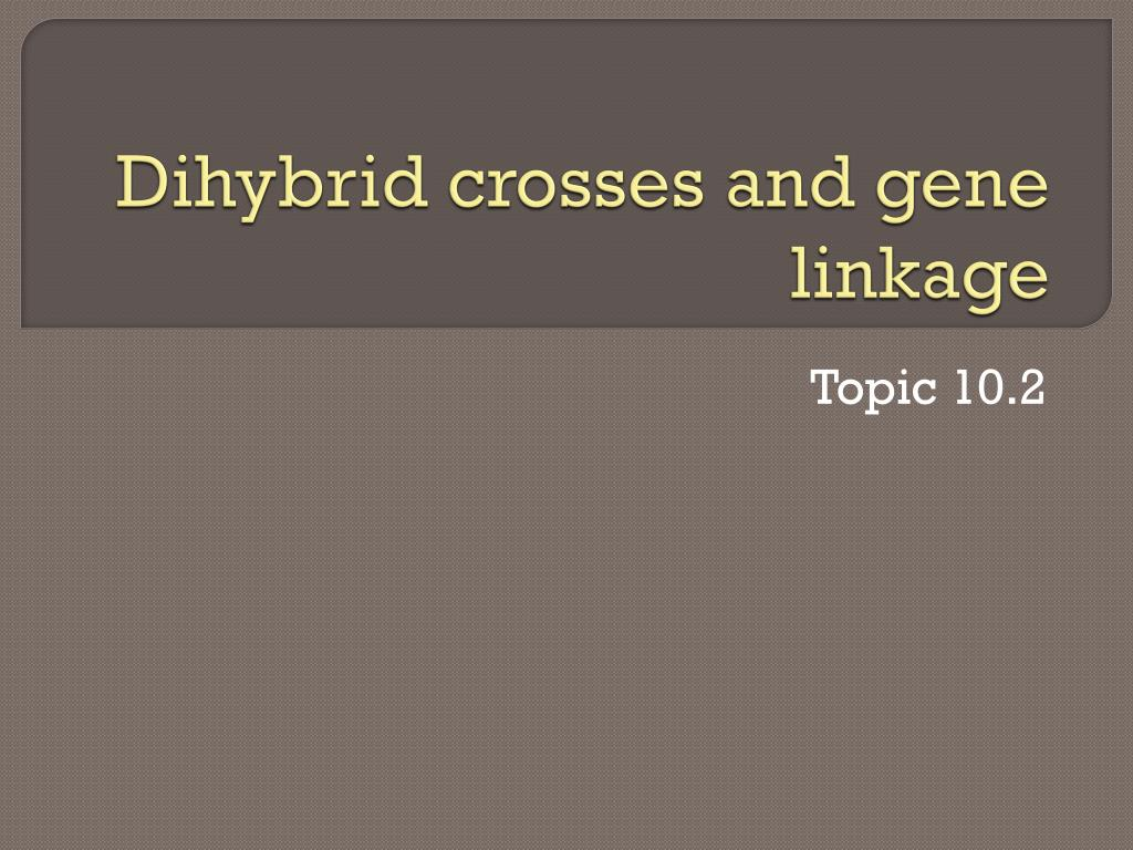 dihybrid crosses and gene linkage l.