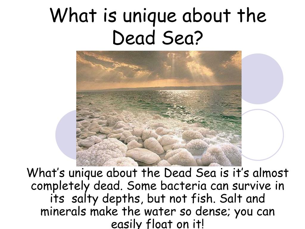 What is unique about the Dead Sea?