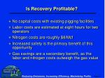 is recovery profitable17