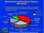 natural gas and petroleum industry emissions