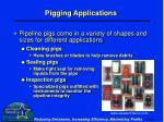 pigging applications