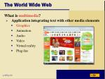 the world wide web34