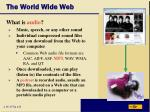 the world wide web38