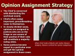 opinion assignment strategy