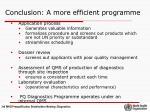 conclusion a more efficient programme