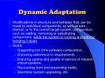 dynamic adaptation