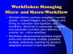 workflakes managing micro and macro workflow