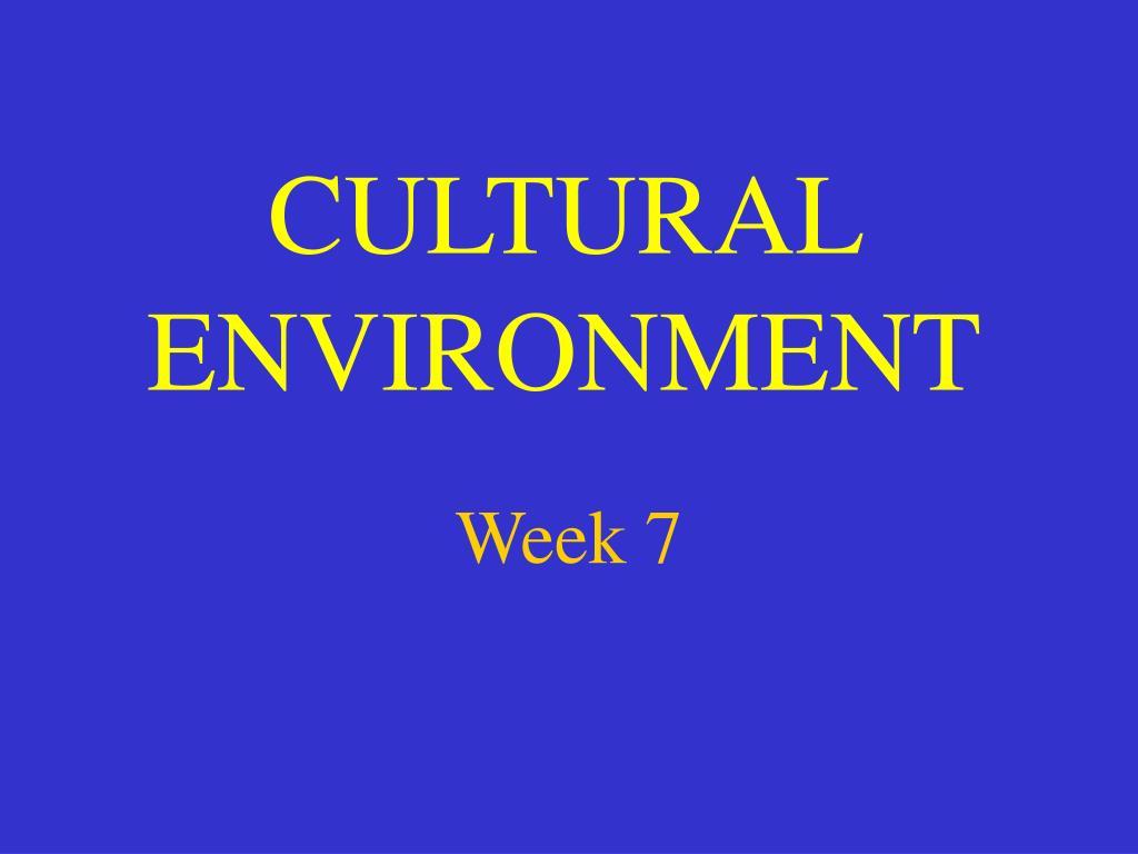 cultural environment l.